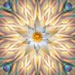 Mandala Opalprozeß